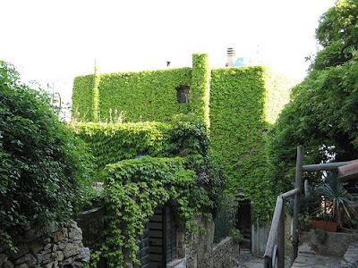 casas ecol gicas techos y paredes verdes