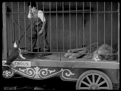Charlie Chaplin. The Circus. jumping dog
