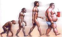 la evolucion en la obecidad