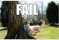 Perro fail
