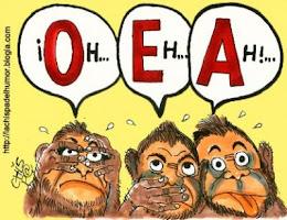 a OEA que é financiada pelos golpistas dos EUA