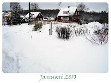 Månadens bild  2010