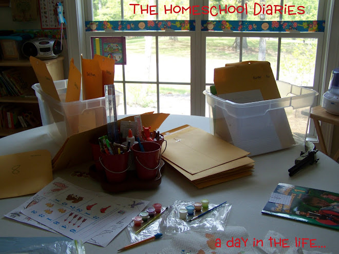 the homeschool diaries