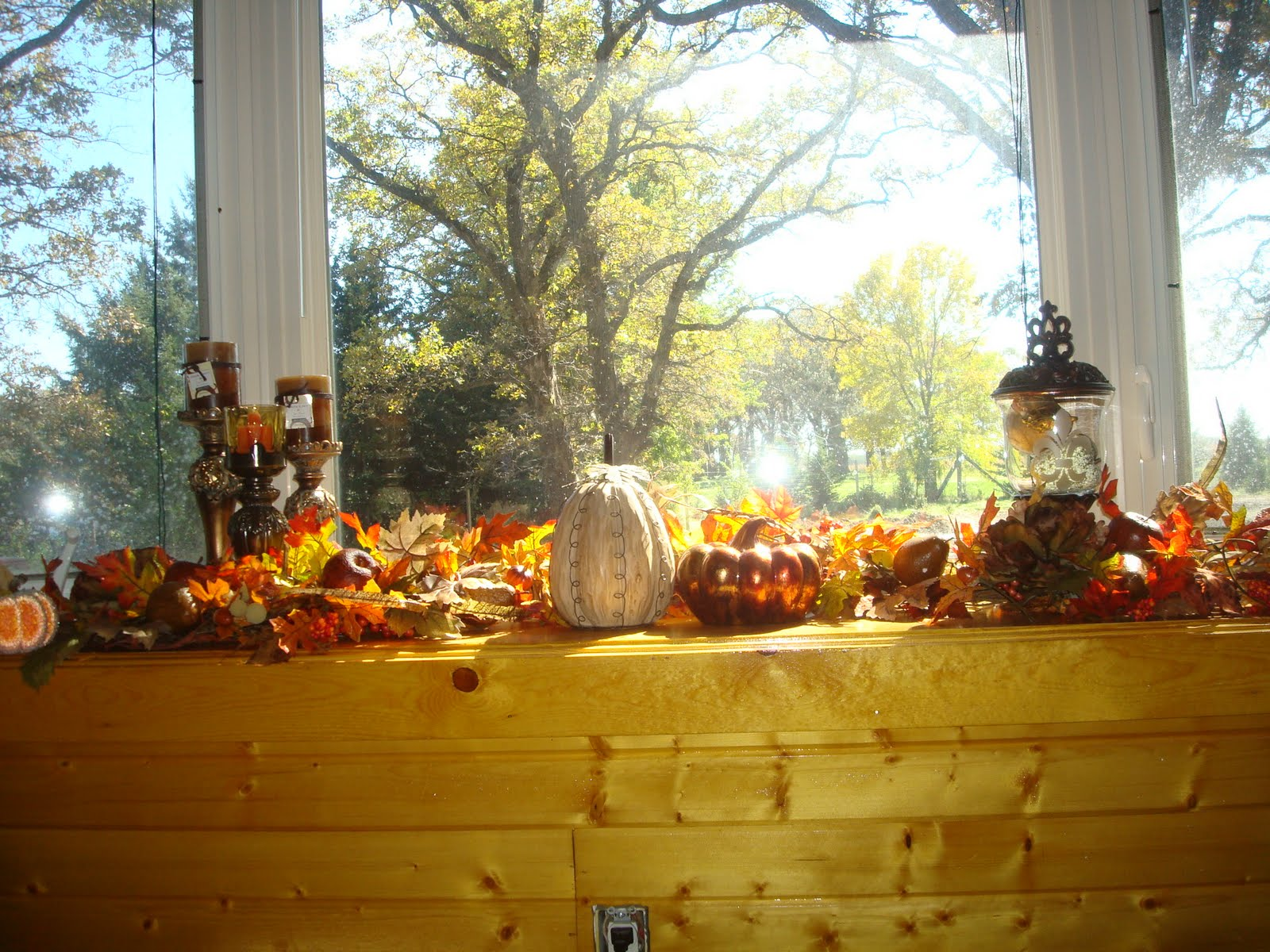 Gypsie my fall window decorations inspired by dina manzo for Autumn window decoration
