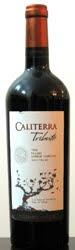 1514 - Caliterra Tributo Malbec 2006 (Tinto)