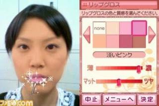 Nintendo DS game screen shot