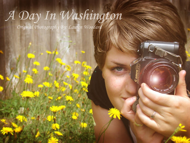 A Day In Washington