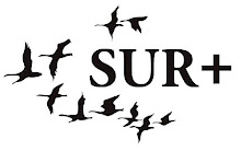 Sur+ Ediciones