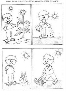 Mais Atividades Sobre Plantas