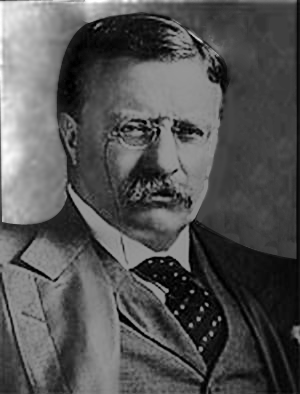roosevelt immigration and americanism essay Primary speeched written and delivered by president theodore roosevelt addresses, and essays by theodore roosevelt true americanism.