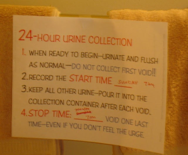 Promoting Health and Patient Education: 24 Hour Urine Collection ...