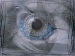 Eye 2009