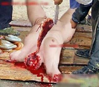 foto-foto kanibal di china cina pemakan daging tubuh perawan