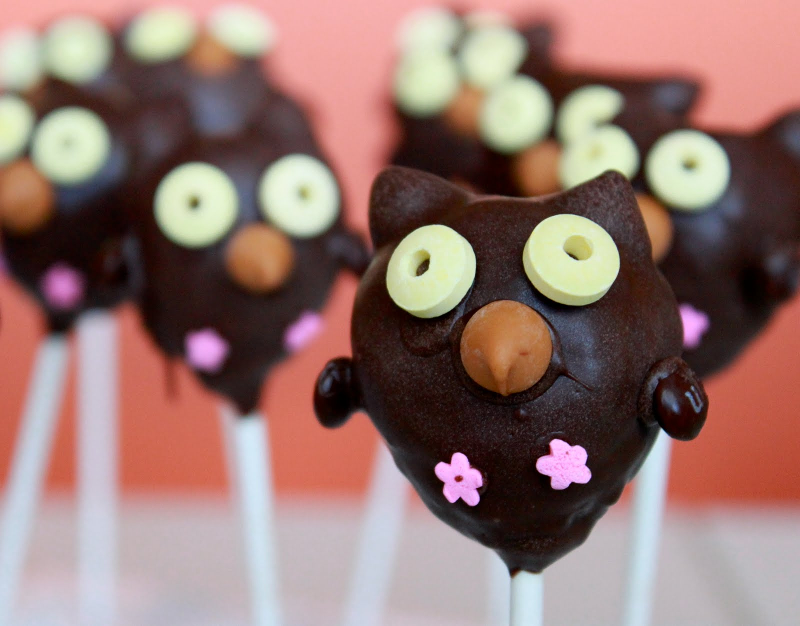 Owl Cake Pop Images