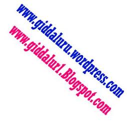 www.giddaluru.wordpress.com