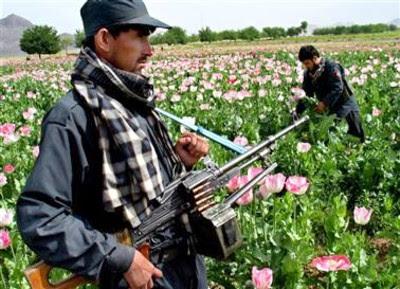 http://4.bp.blogspot.com/_4aNto1NiGcY/RoKN_I_T5QI/AAAAAAAAINM/vtYspT9-fdI/s400/afghanistan+opium2.jpg