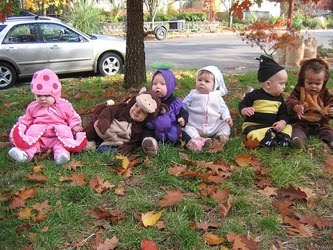 Animal Baby Costumes