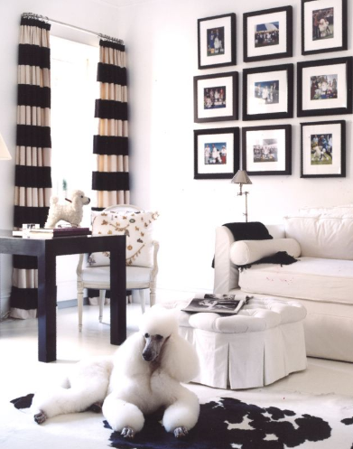 [living+room-black+and+white+dog_Oberto+Gili+photographer-i2i+photography.png]