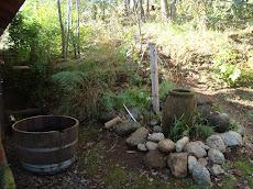 Caida de Agua en mi campo...