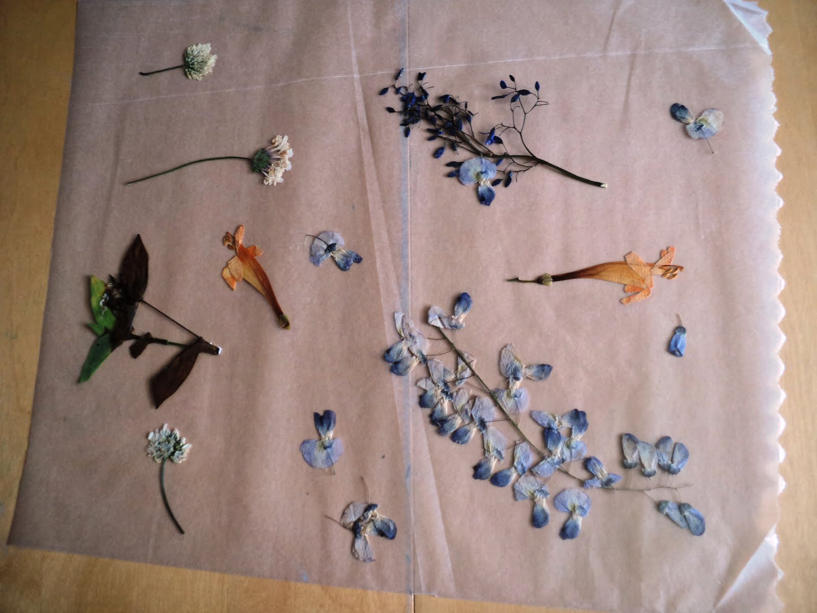 A Little Learning For Two Wax Paper Flower Hangings
