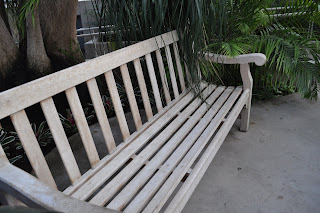 This is a picture of the bench I was sitting on when he asked