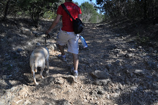 Egypt guiding Darrell through a bunch of rocks and gravel on the trail, there's trees all around and Darrell has my camera bag and Egypts water bottle hanging off his waste.