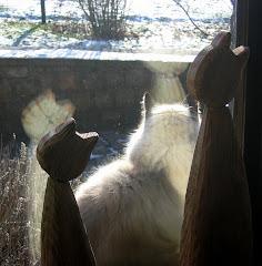 la photo du 3 janvier 2010 (584)