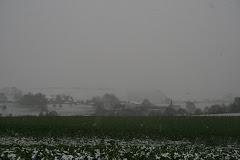 la photo du 23 novembre 2008 (194)