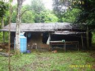 Rumah Cendawan Pertama