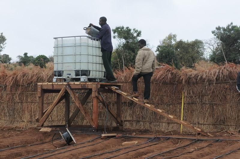 Manna 4 Malawi: Gravity Drip Irrigation at Matapila