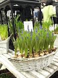 Trädgårdsmässan 2009