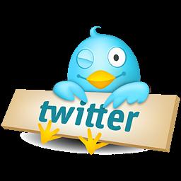 Раскрутка twitter(Блог Reanimatora)