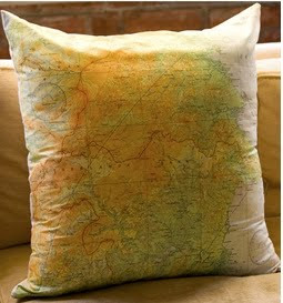 aviator map throw pillow