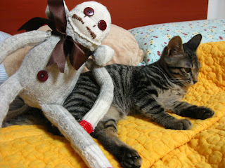 sock monkey vs cat