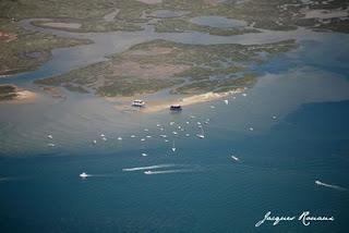 Vue aérienne de l'ile aux oiseaux a arcachon