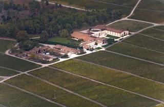 Vue aerienne Vignoble du Domaine de Chevalier
