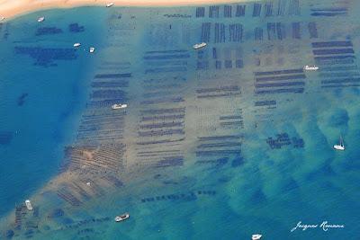 Photo aérienne des Parcs à huîtres du Banc d'Arguin à l'entrée du Bassin d'Arcachon