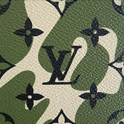 Louis Vuitton Monogramouflage Canvas Print