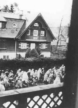 [holocausto+3.jpg]