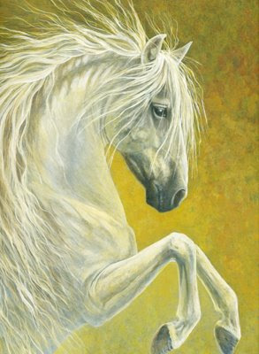 andalusian horse stallion painting by equine artist Shari Erickson