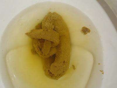 The poop log final exam poo
