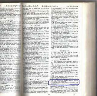 Bible Psalm 118:8