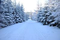 droga na Polane zima
