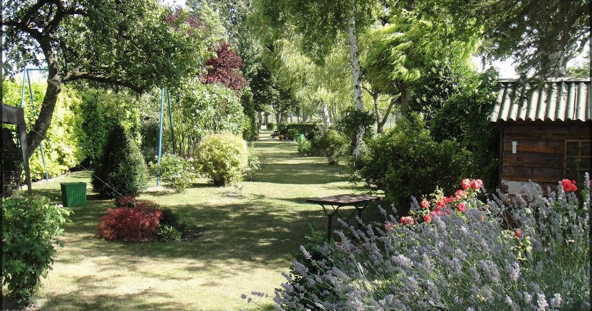 Bonnes raisons vegetation for Alexandre jardin nu