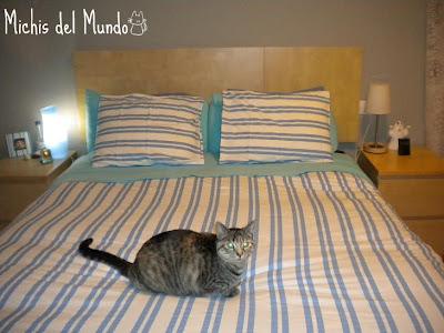 Michis Del Mundo Cabecero Por Menos De 15 Con Ikea