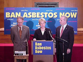 Ban Use of Asbestos Products