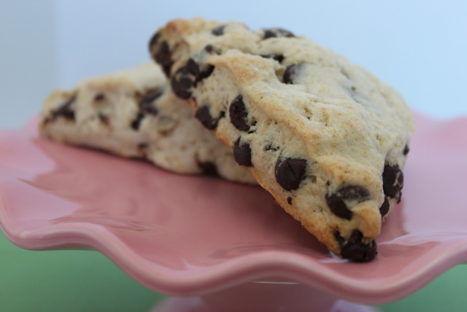 Squirrel Bakes: Chocolate Chip Scones