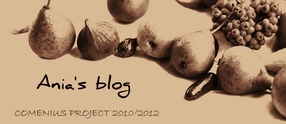 Ania's blog
