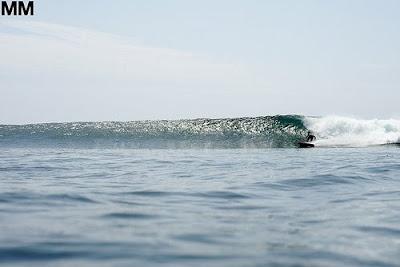 photo de surf 5406