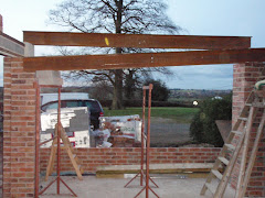 Beams going in